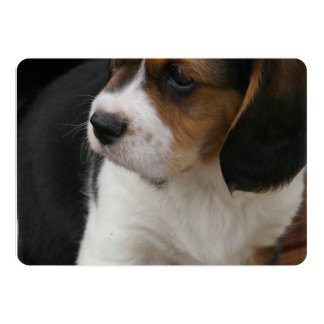 Beagle Pup Personalized Announcement