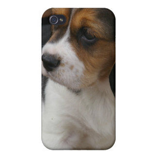 Beagle Pup iPhone Case Case For iPhone 4