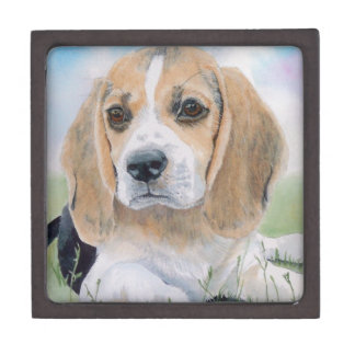 Beagle Pup Jewelry Box