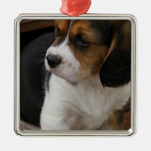 Beagle Pup Ornament