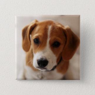Beagle Puppy 2 Button