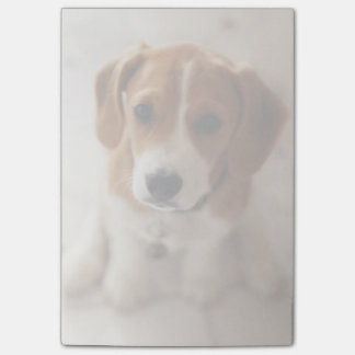 Beagle Puppy 2 Post-it Notes