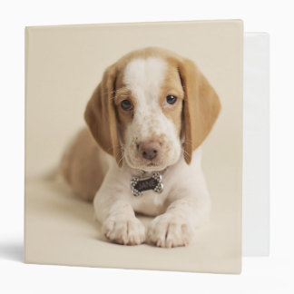 Beagle Puppy 3 Ring Binder