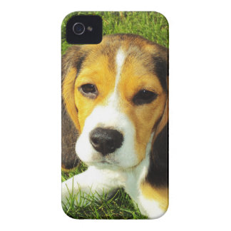 Beagle Puppy Barely There™ iPhone 4 Case