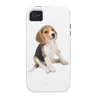 Beagle Puppy Vibe iPhone 4 Cases