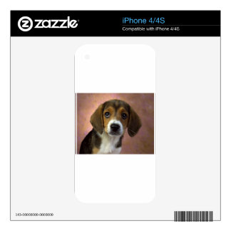 Beagle Puppy Dog Decal For The iPhone 4
