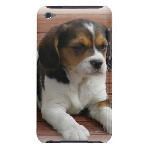 Beagle Puppy Dog iTouch Case iPod Touch Cases