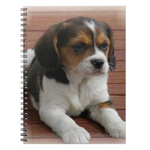 Beagle Puppy Dog Notebook