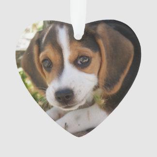 Beagle Puppy Dog Ornament