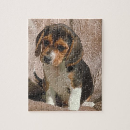 Beagle Puppy Dog Puzzle