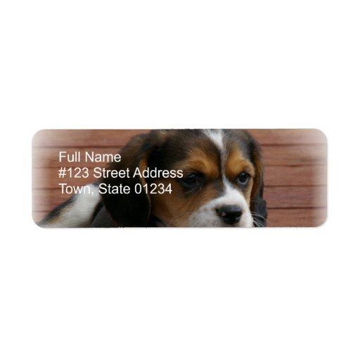 Beagle Puppy Dog Return Address Label