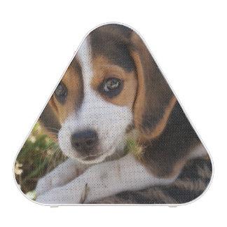 Beagle Puppy Dog Speaker
