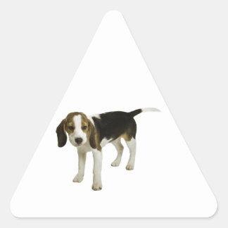 Beagle Puppy Dog Triangle Sticker