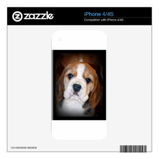 Beagle Puppy Love Decals For The iPhone 4S