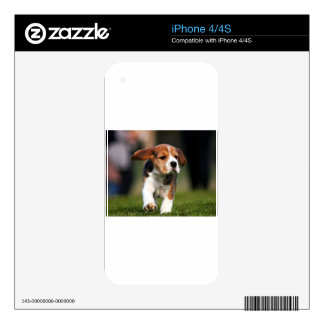 Beagle Puppy Love Skins For The iPhone 4S