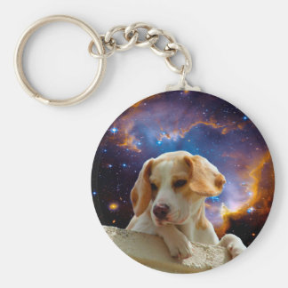 beagle puppy on the wall  looking at the universe basic round button keychain