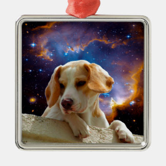 beagle puppy on the wall  looking at the universe Silver-Colored square ornament
