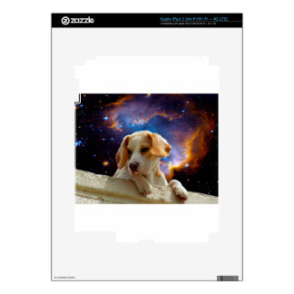 beagle puppy on the wall  looking at the universe iPad 3 skin
