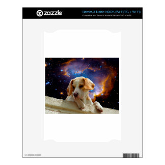beagle puppy on the wall  looking at the universe decals for NOOK