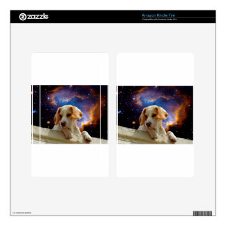 beagle puppy on the wall  looking at the universe decals for kindle fire