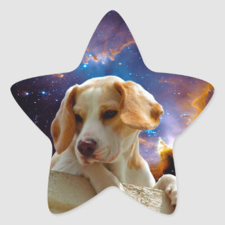 beagle puppy on the wall  looking at the universe star sticker