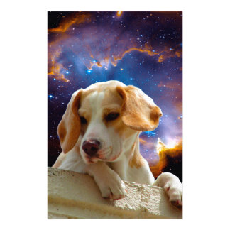 beagle puppy on the wall  looking at the universe stationery