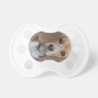 Beagle Puppy Pacifier