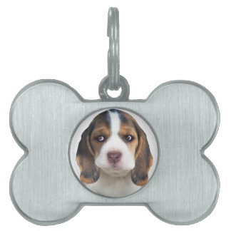 Beagle Puppy Portrait gifts Pet Name Tag