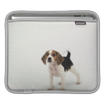 Beagle puppy sleeve for iPads