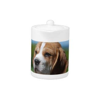 Beagle Puppy  Teapot