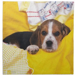 Beagle Puppy Wakes Up Napkin