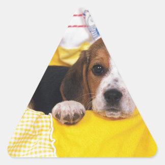 Beagle Puppy Wakes Up Triangle Sticker