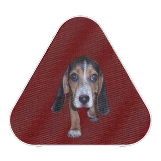 Beagle Puppy Walking - Red Background Color Speaker