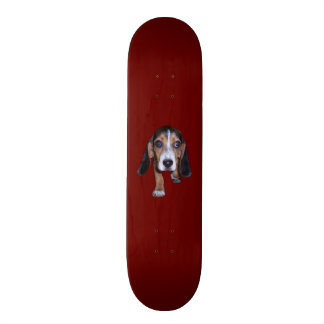 Beagle Puppy Walking - Red Background Color Skate Decks