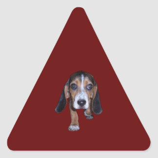 Beagle Puppy Walking - Red Background Color Triangle Sticker