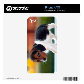 Beagle Puppy Zazzle Skin Skin For iPhone 4