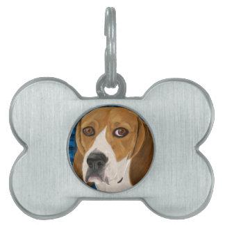 Beagle que mira fijamente directamente usted - pin placas mascota