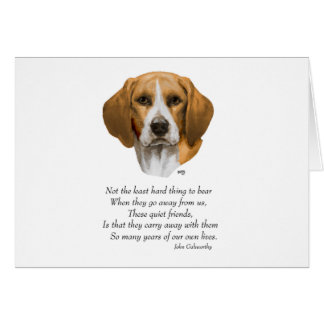 Beagle Rainbow Bridge Card