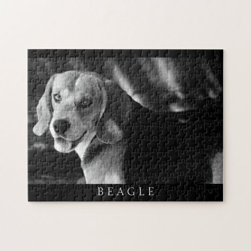 Beagle - rompecabezas