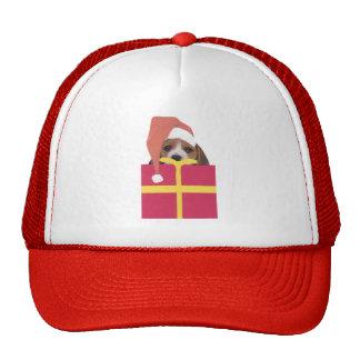 Beagle Santa Hat Gift Box