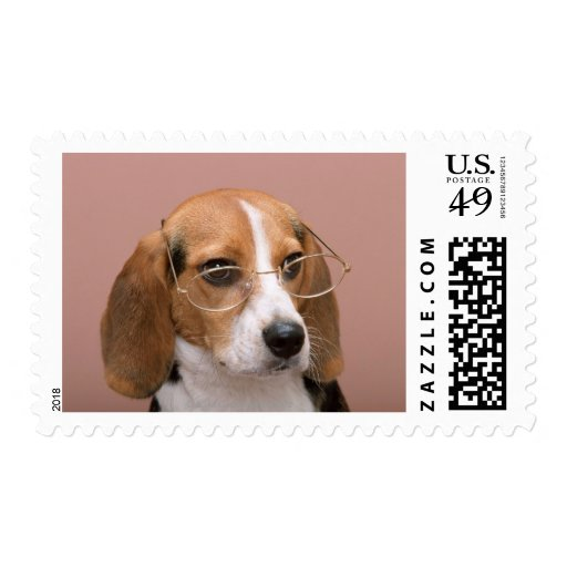 Beagle Sello Postal
