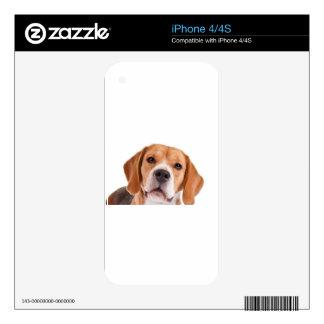 Beagle Skin For iPhone 4