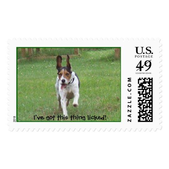 Beagle Slobber Postage