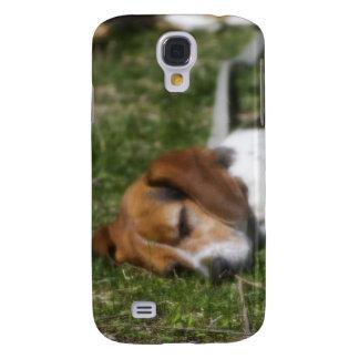 Beagle soñoliento