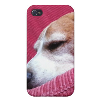 Beagle soñoliento iPhone 4 cárcasas