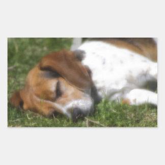 Beagle soñoliento rectangular pegatinas