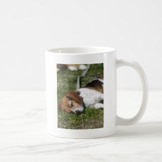Beagle soñoliento taza de café