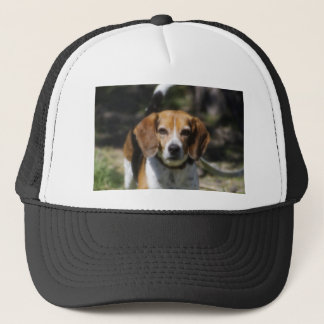 Beagle Stair Trucker Hat