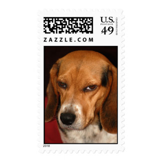 Beagle Stamps
