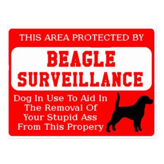 beagle surveillance.png postcard